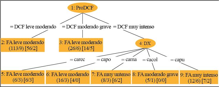 Resultados obtenidos con base en el tipo de diagnóstico y la intensidad de dolor de cada uno clasificado con el algoritmo REPTree
