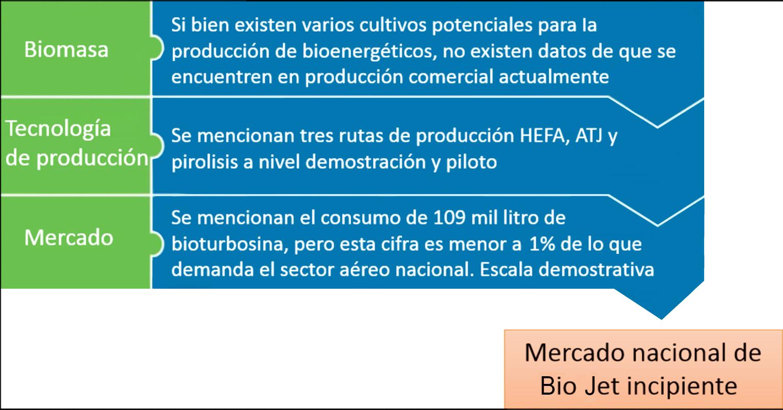 Nivel de desarrollo del mercado nacional de Bio Jet