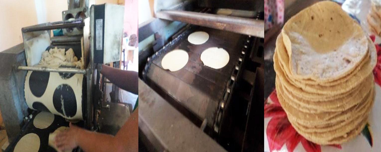 Proceso de elaboración de tortillas de maíz adicionado con 10% harina de B. alicastrum