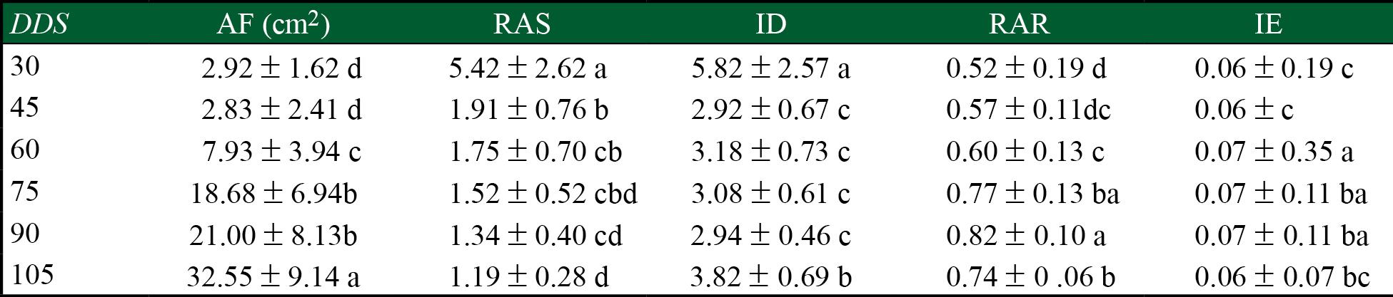 Características de árboles de Leucaena esculenta de diferentes progenies, transcurridos 105 días de crecimiento en invernadero